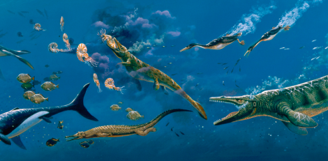 An example of some of the creatures found in the Western Interior Seaway. Source